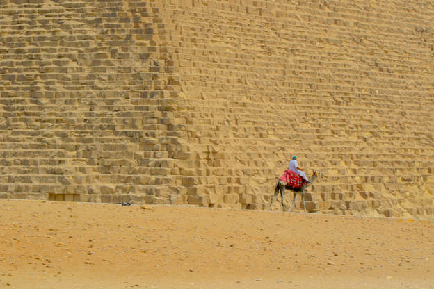 Camel rider by the Great pyramid